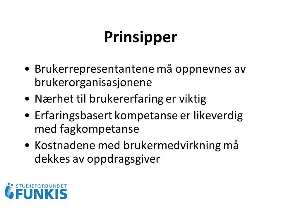 Prinsipper Brukerrepresentantene må oppnevnes av brukerorganisasjonene