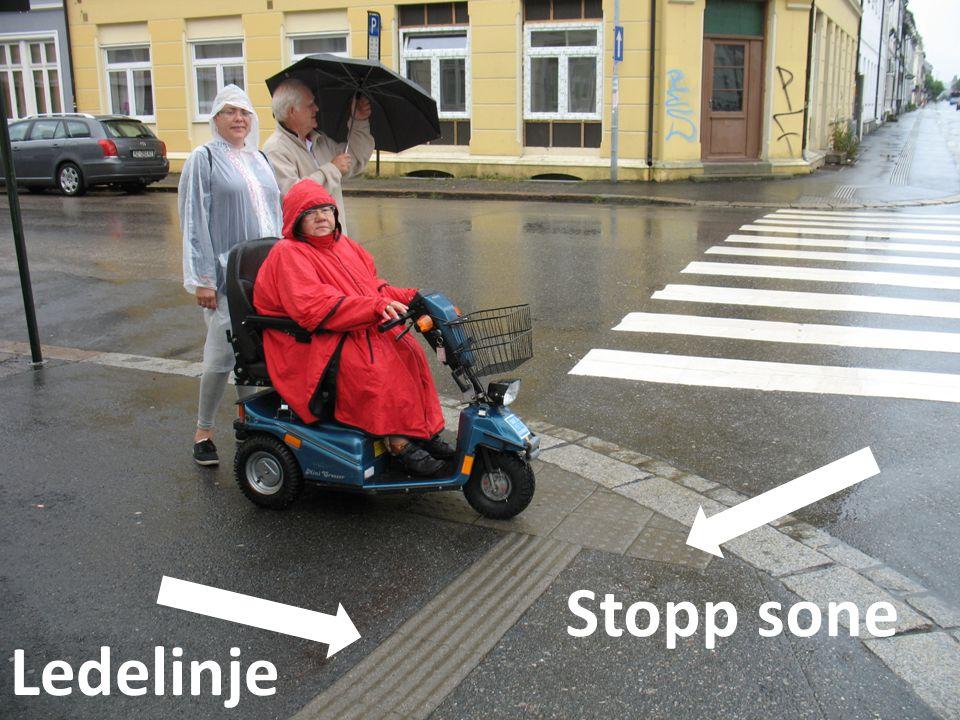 Stopp sone Ledelinje