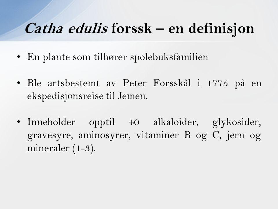 Catha edulis forssk – en definisjon