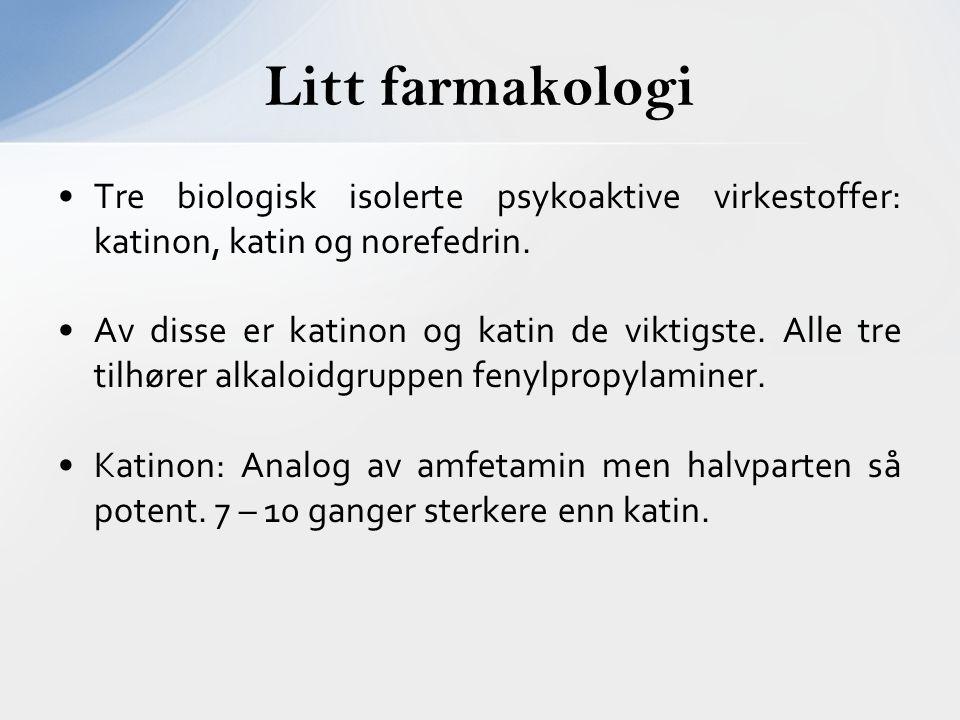 Litt farmakologi Tre biologisk isolerte psykoaktive virkestoffer: katinon, katin og norefedrin.