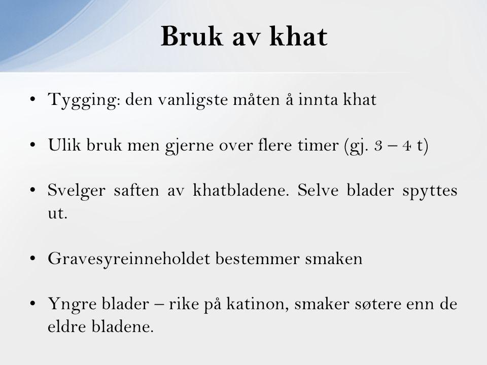 Bruk av khat Tygging: den vanligste måten å innta khat