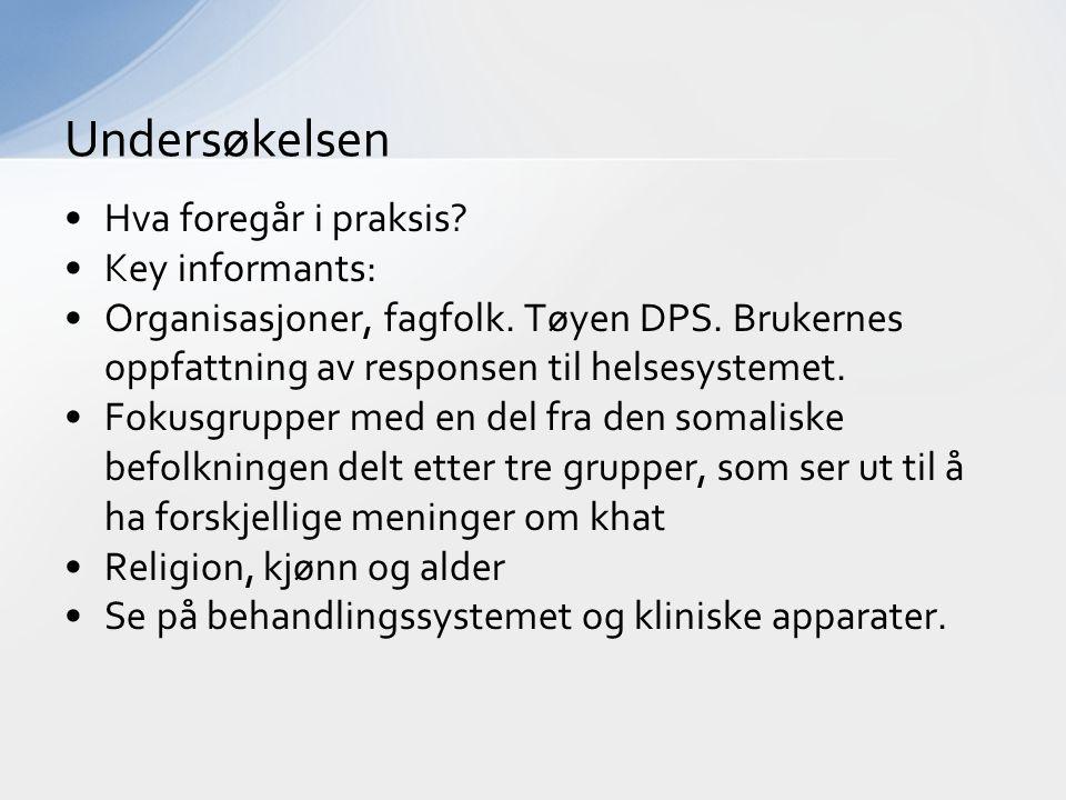 Undersøkelsen Hva foregår i praksis Key informants: