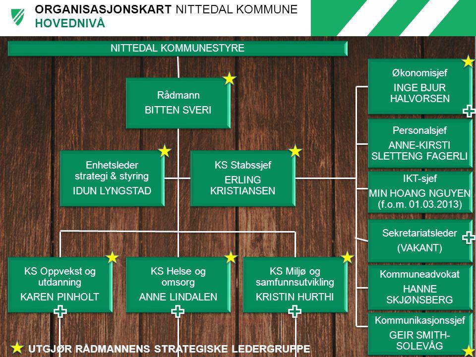 HOVEDNIVÅ UTGJØR RÅDMANNENS STRATEGISKE LEDERGRUPPE