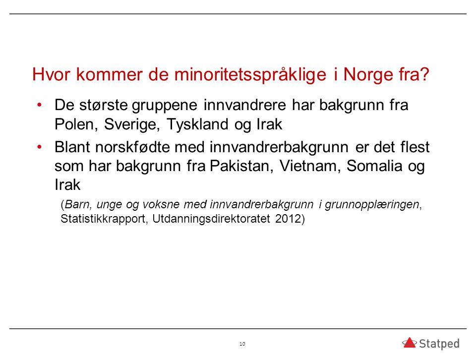 Hvor kommer de minoritetsspråklige i Norge fra