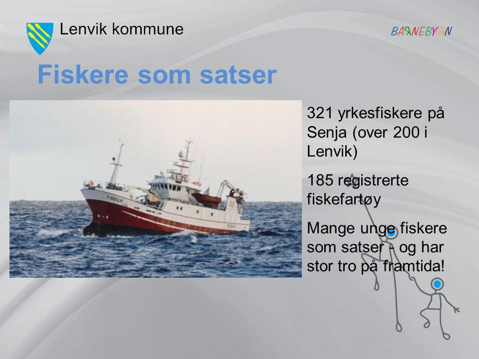 Fiskere som satser 321 yrkesfiskere på Senja (over 200 i Lenvik)