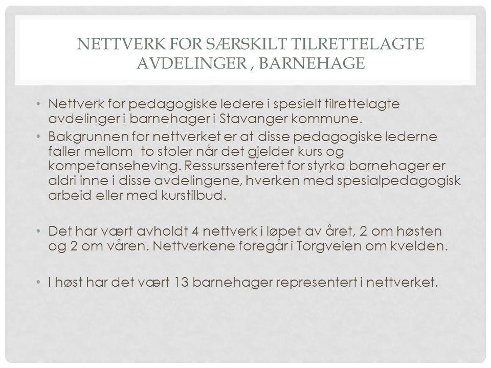 Nettverk for særskilt tilrettelagte avdelinger , barnehage