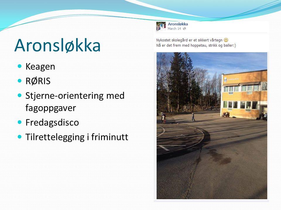 Aronsløkka Keagen RØRIS Stjerne-orientering med fagoppgaver