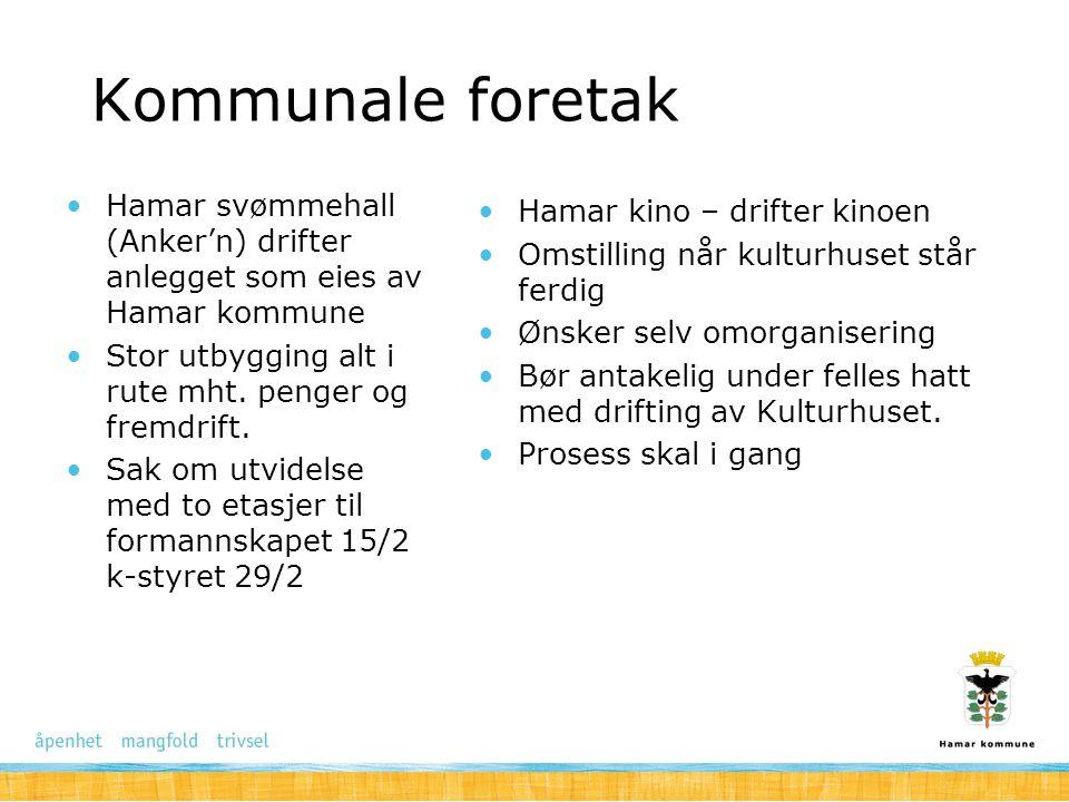 Kommunale foretak Hamar svømmehall (Anker'n) drifter anlegget som eies av Hamar kommune. Stor utbygging alt i rute mht. penger og fremdrift.