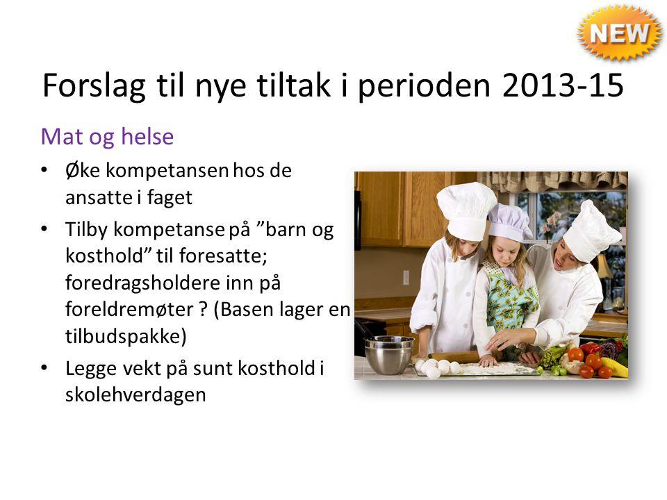 Forslag til nye tiltak i perioden 2013-15