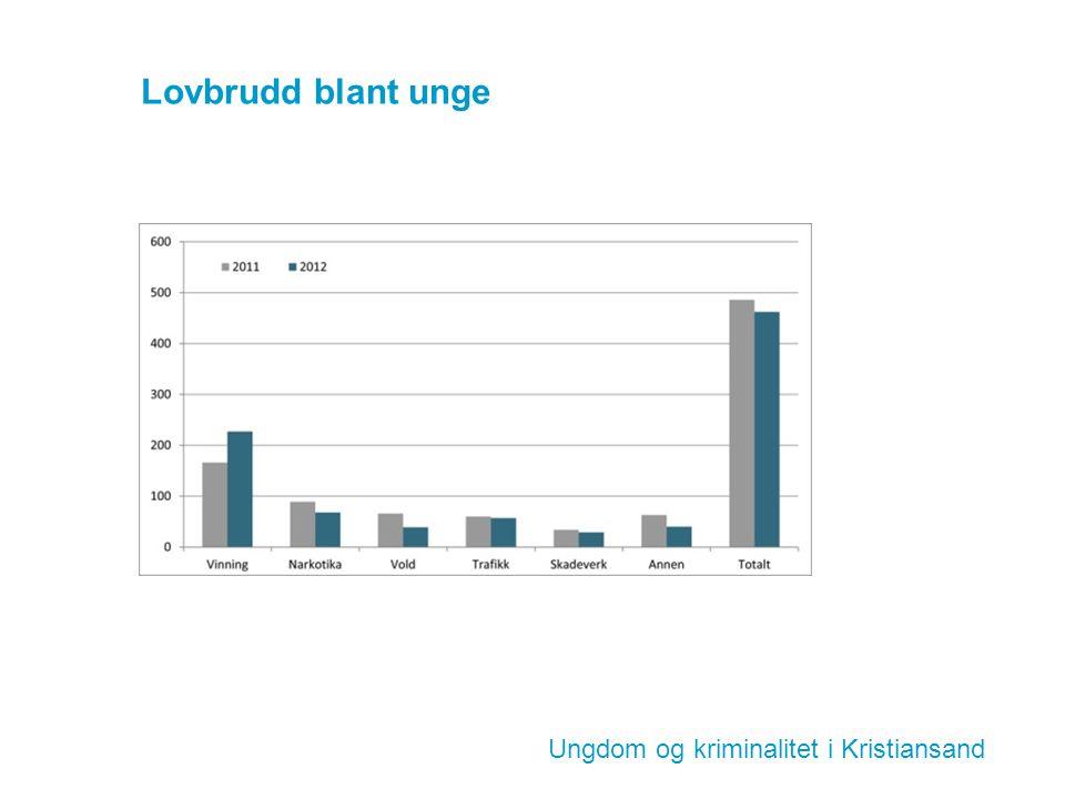 Lovbrudd blant unge Ungdom og kriminalitet i Kristiansand