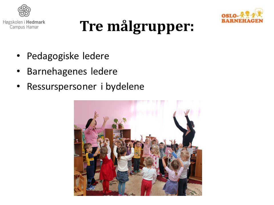 Tre målgrupper: Pedagogiske ledere Barnehagenes ledere