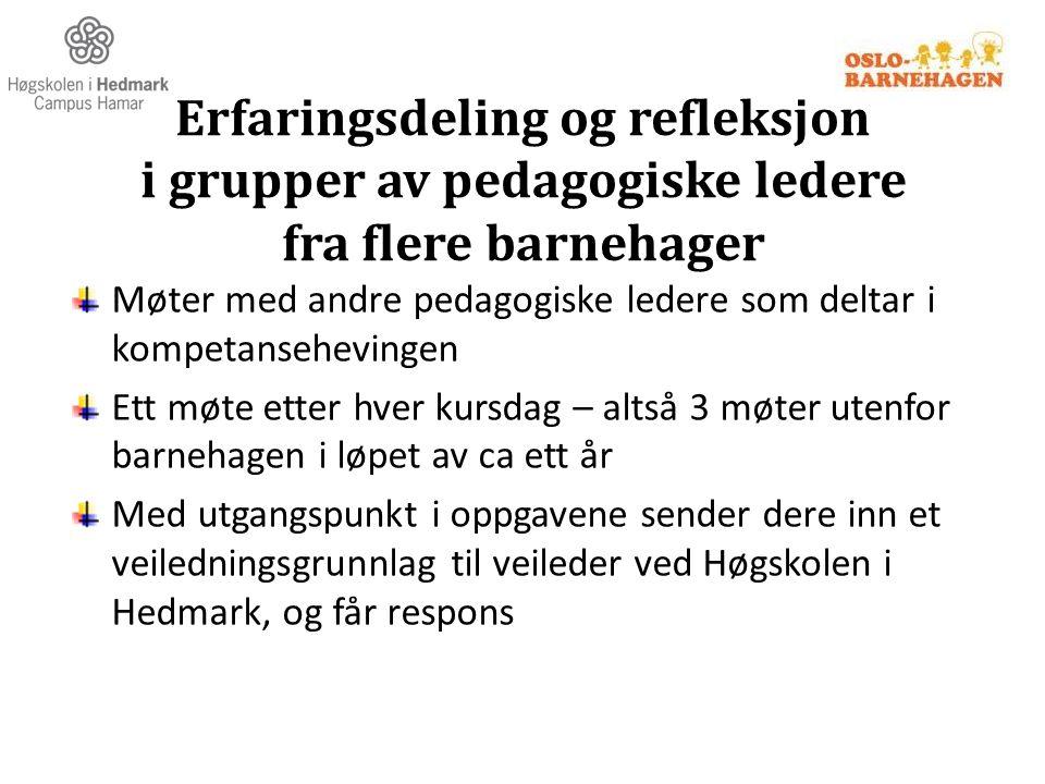 Erfaringsdeling og refleksjon i grupper av pedagogiske ledere fra flere barnehager