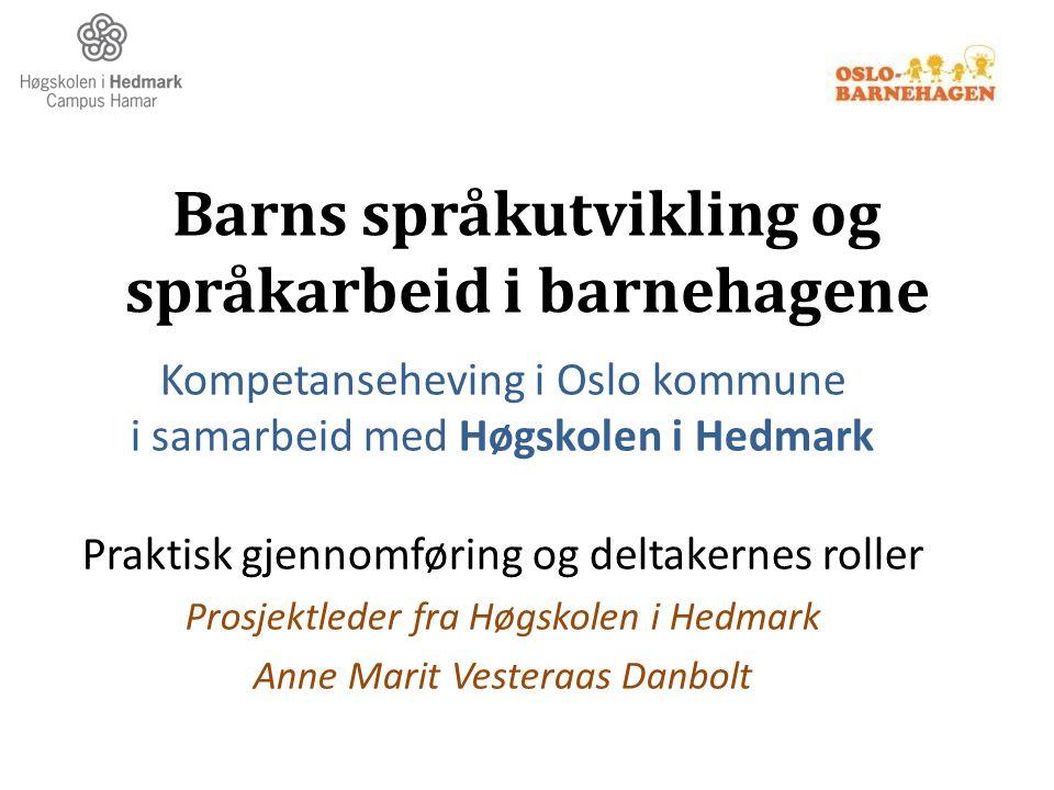 Barns språkutvikling og språkarbeid i barnehagene