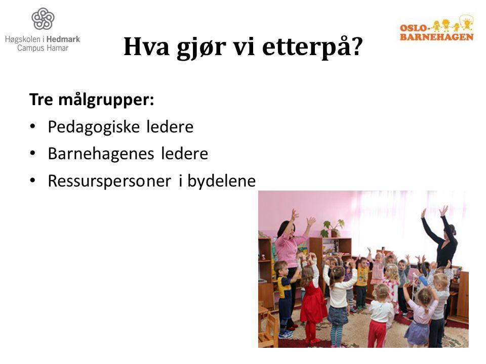 Hva gjør vi etterpå Tre målgrupper: Pedagogiske ledere
