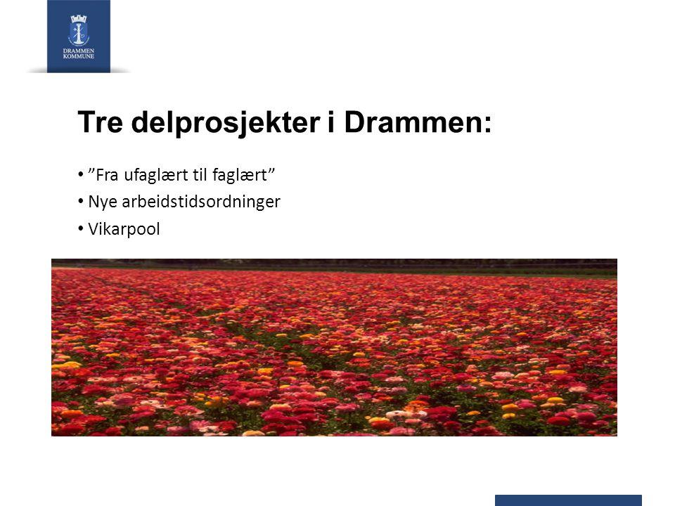 Tre delprosjekter i Drammen: