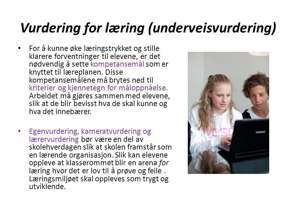 Vurdering for læring (underveisvurdering)
