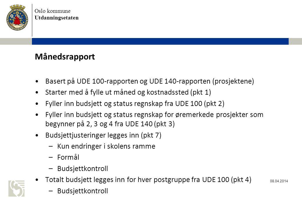 Månedsrapport Basert på UDE 100-rapporten og UDE 140-rapporten (prosjektene) Starter med å fylle ut måned og kostnadssted (pkt 1)