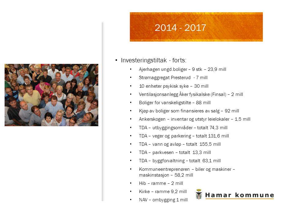 2014 - 2017 Investeringstiltak - forts: