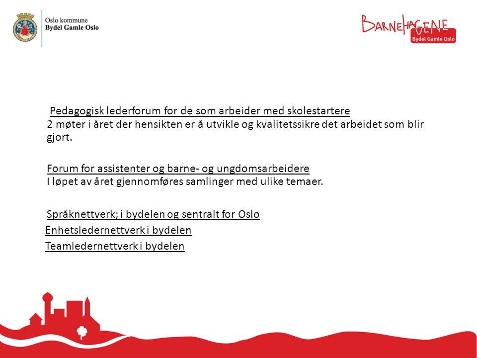 Språknettverk; i bydelen og sentralt for Oslo