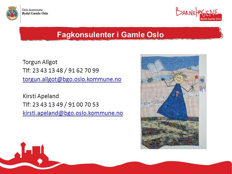 Fagkonsulenter i Gamle Oslo