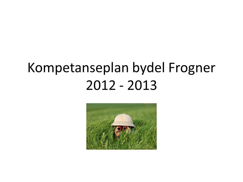 Kompetanseplan bydel Frogner 2012 - 2013