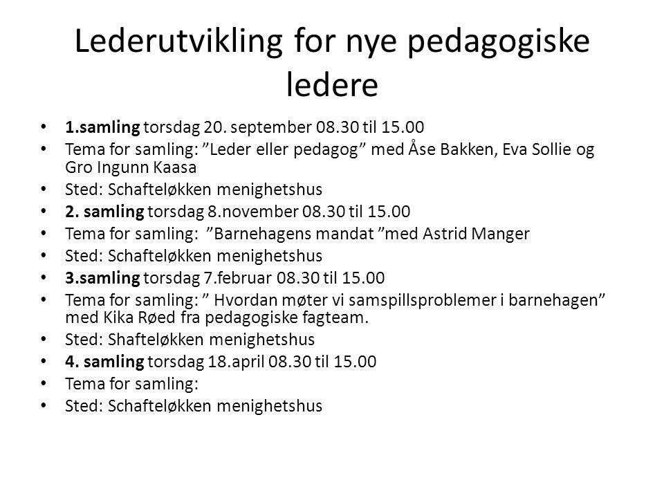 Lederutvikling for nye pedagogiske ledere