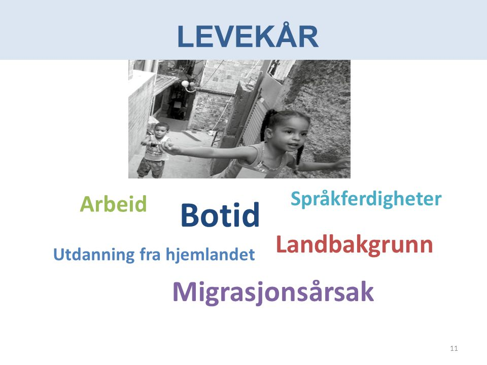 Botid Levekår Migrasjonsårsak Landbakgrunn Arbeid Språkferdigheter