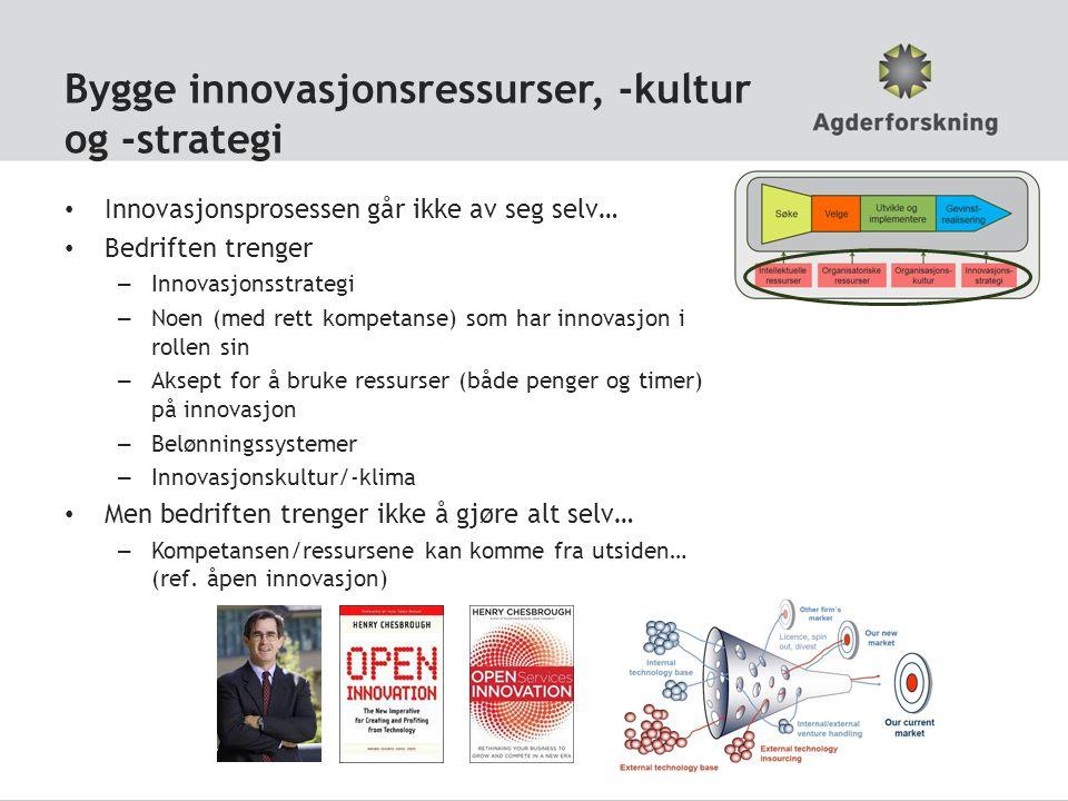 Bygge innovasjonsressurser, -kultur og -strategi