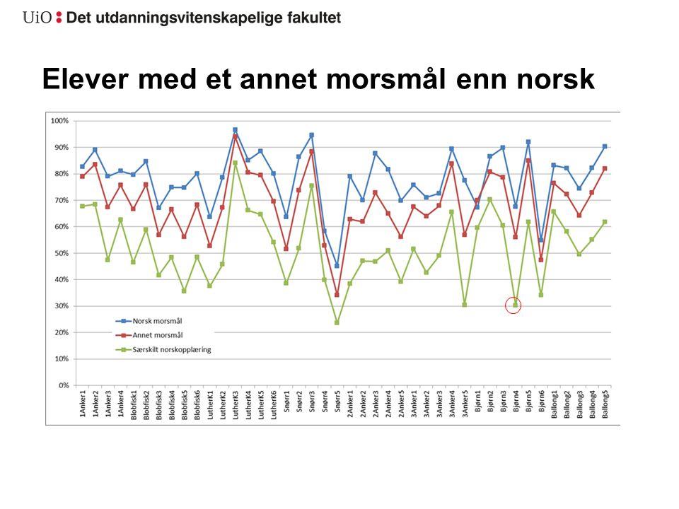 Elever med et annet morsmål enn norsk
