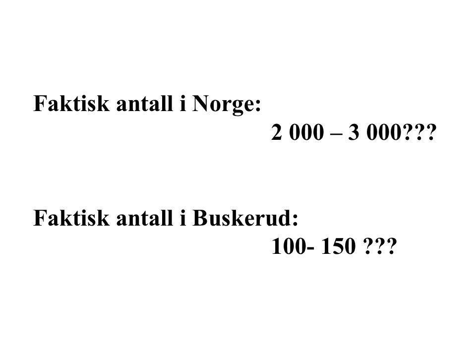 Faktisk antall i Norge: