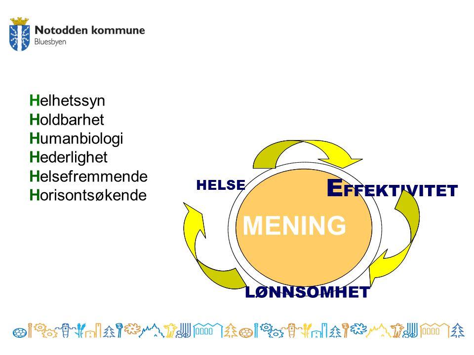 MENING EFFEKTIVITET Helhetssyn Holdbarhet Humanbiologi Hederlighet