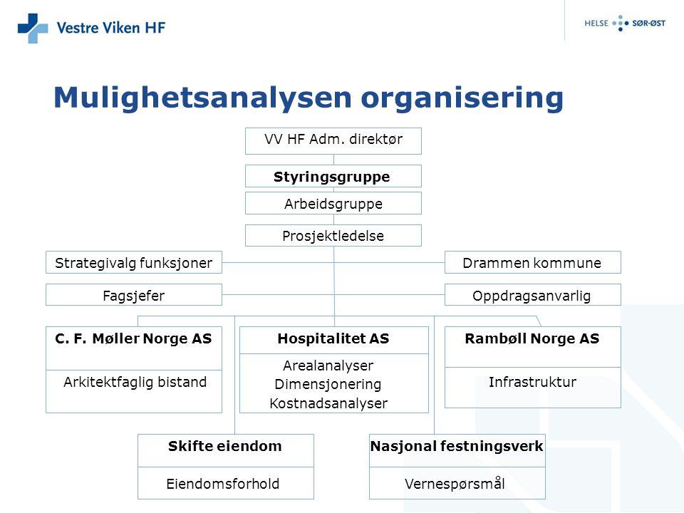 Mulighetsanalysen organisering