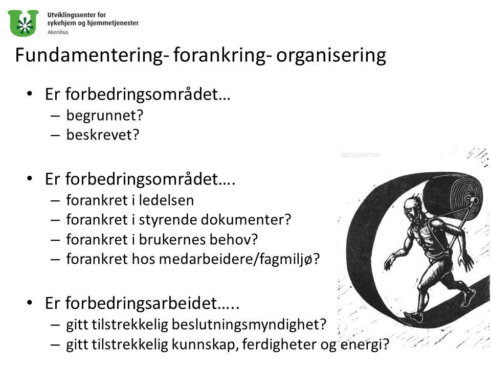 Fundamentering- forankring- organisering