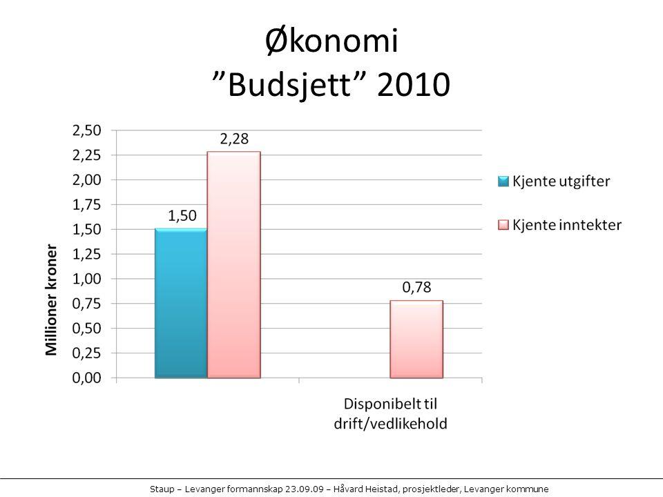 Økonomi Budsjett 2010