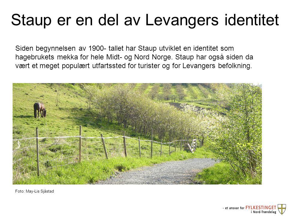 Staup er en del av Levangers identitet