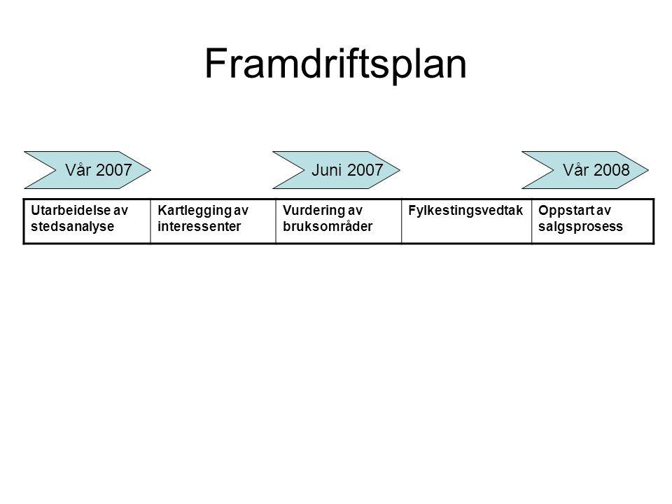 Framdriftsplan Vår 2007 Juni 2007 Vår 2008