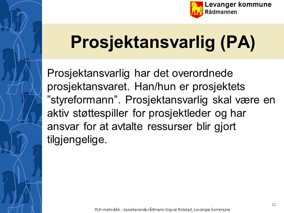 Prosjektansvarlig (PA)