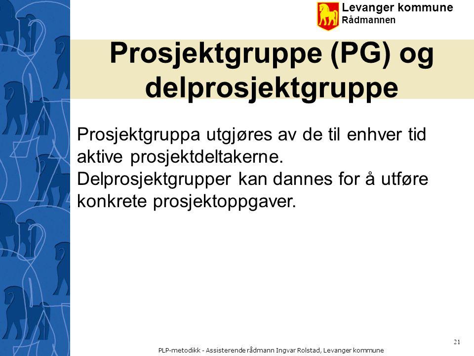 Prosjektgruppe (PG) og delprosjektgruppe