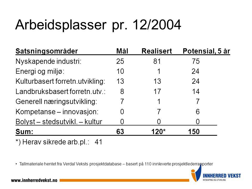 Arbeidsplasser pr. 12/2004 Satsningsområder Mål Realisert Potensial, 5 år. Nyskapende industri: 25 81 75.