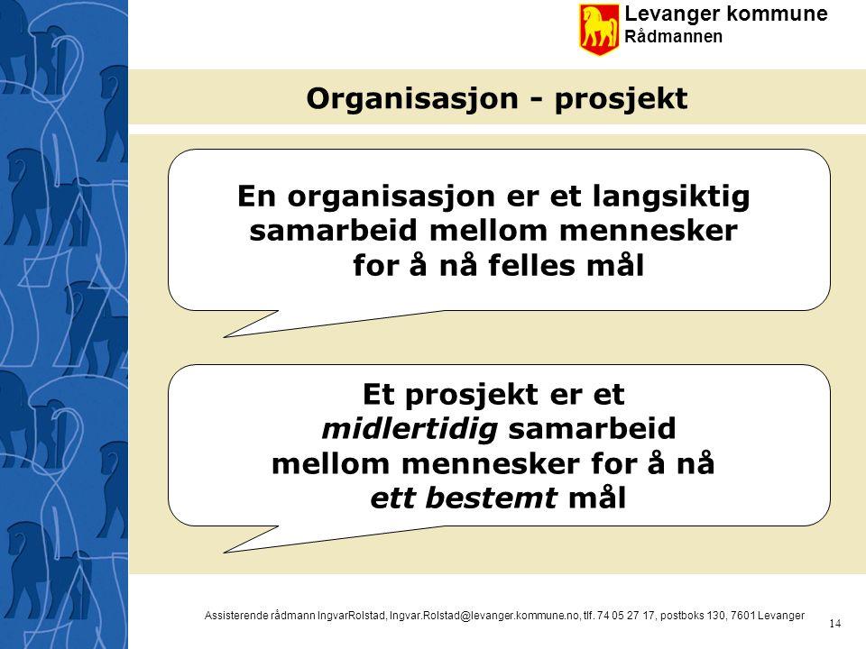 Organisasjon - prosjekt
