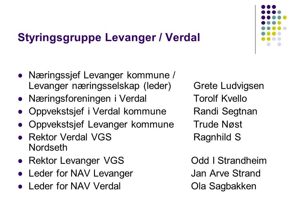 Styringsgruppe Levanger / Verdal