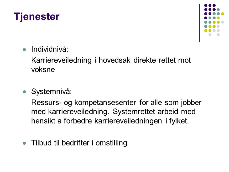 Tjenester Individnivå: