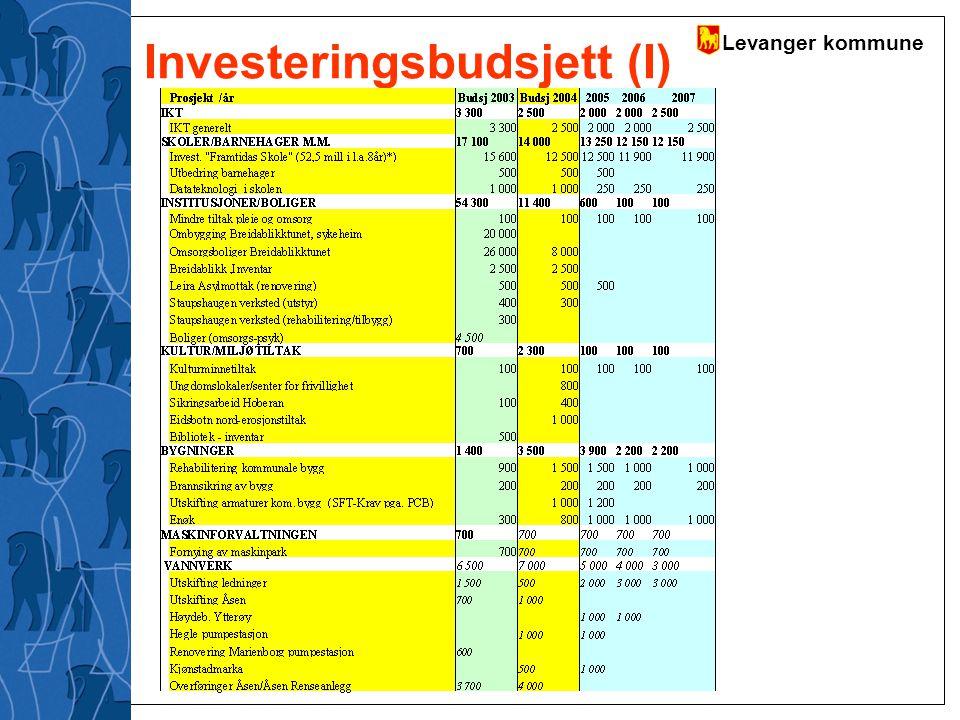 Investeringsbudsjett (I)