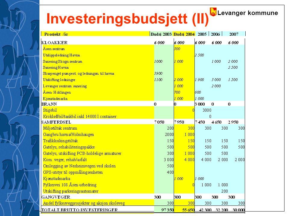 Investeringsbudsjett (II)