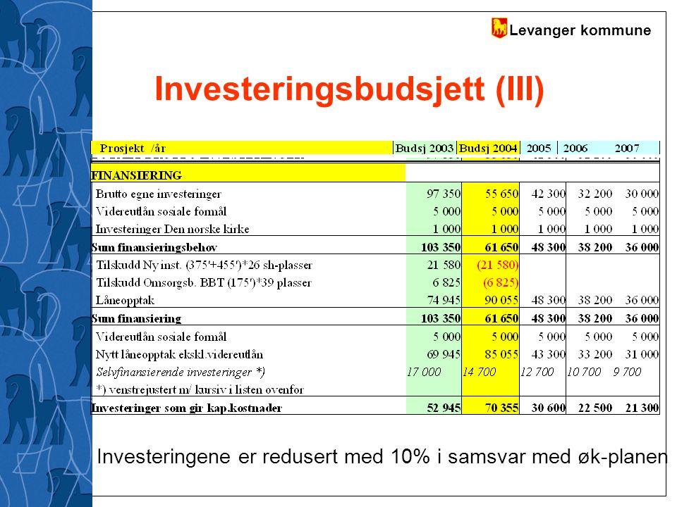 Investeringsbudsjett (III)