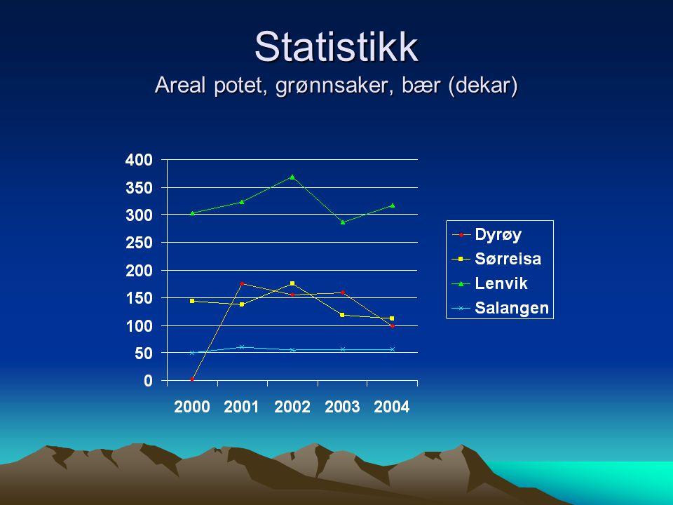 Statistikk Areal potet, grønnsaker, bær (dekar)