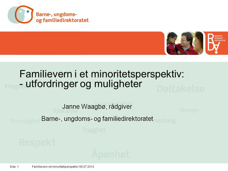 Familievern i et minoritetsperspektiv: - utfordringer og muligheter