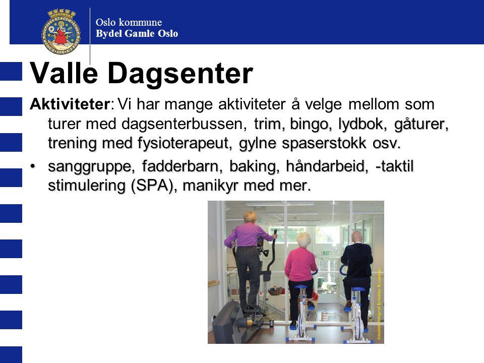 Oslo kommune Bydel Gamle Oslo. Valle Dagsenter.