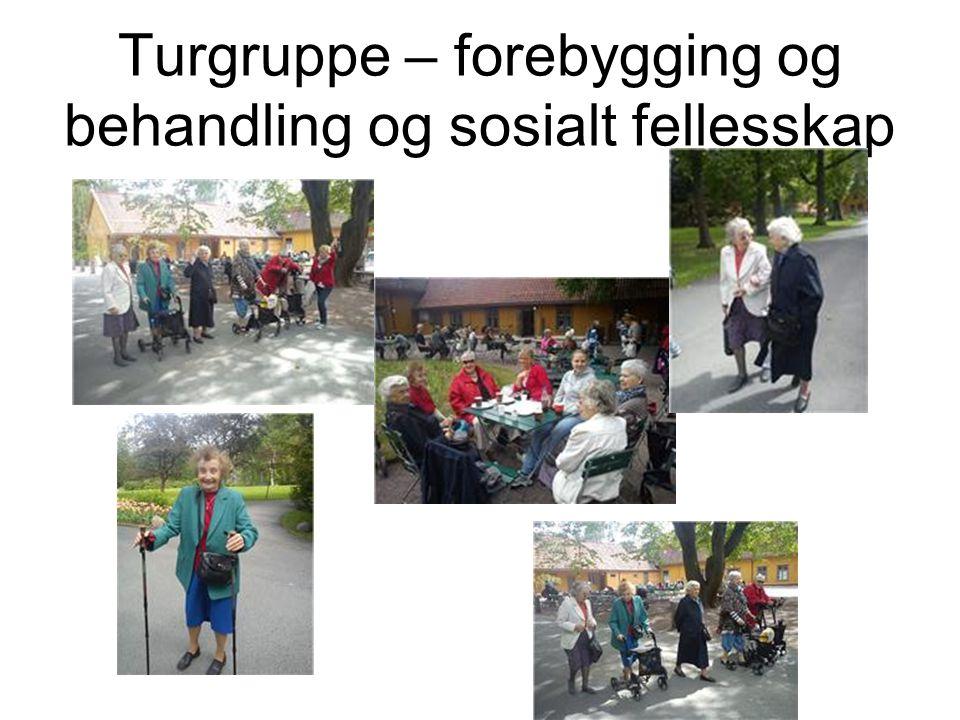 Turgruppe – forebygging og behandling og sosialt fellesskap