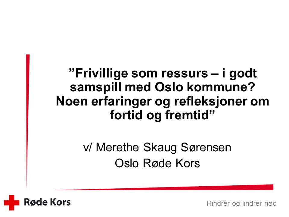 v/ Merethe Skaug Sørensen